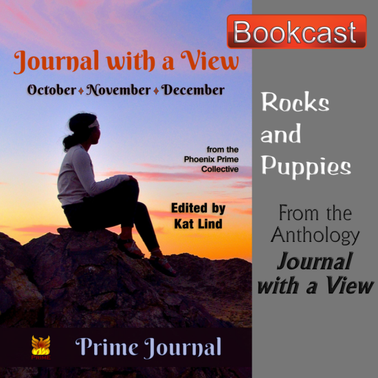 Rocks and Puppies