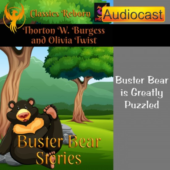 Buster Bear is Greatly Puzzled